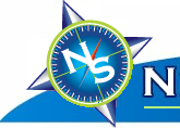 Never-Search logo